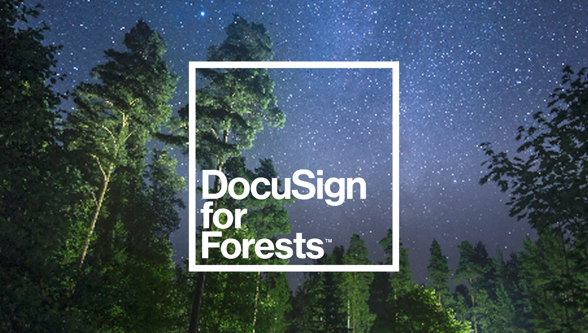 Imagem fixa DocuSign for Forests